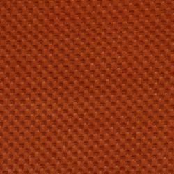 B298 Spice/Texture