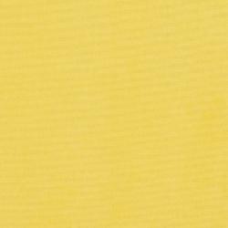 C464 Canary