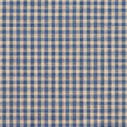 D116 Wedgewood Gingham