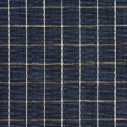 D127 Indigo Checkerboard