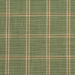 D140 Juniper Windowpane