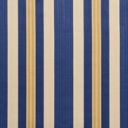 D301 Regal Noble Stripe