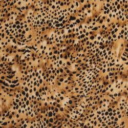 D409 Leopard