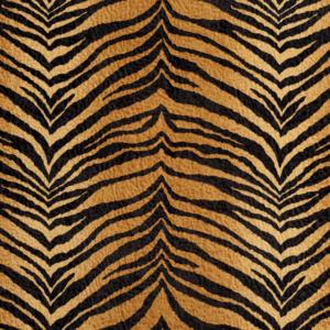 D426 Tiger