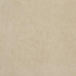 D532 Bisque Texture