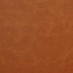 M352 Apricot