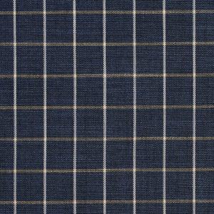 R204 Indigo Checkerboard