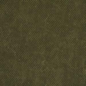R212 Alpine Texture