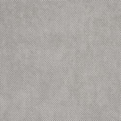 R216 Platinum Texture