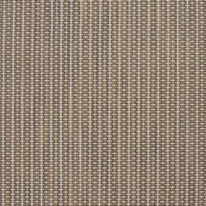 S107 Sandstone