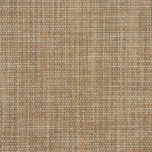 S111 Sand
