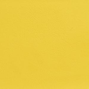 V142 Canary