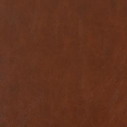 V216 Timber