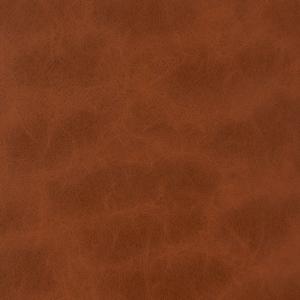 V221 Cinnamon