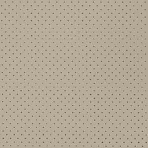V405 Stone Perforated