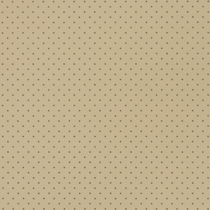 V411 Dune Perforated