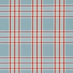 X877 Blue Plaid