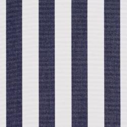 2491 Navy Canopy