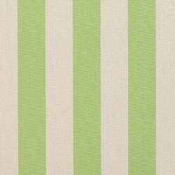 9542 Spring Stripe
