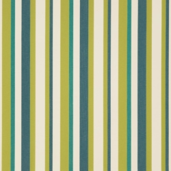 D1012 Meadow Stripe