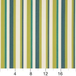D1012 Meadow Stripe