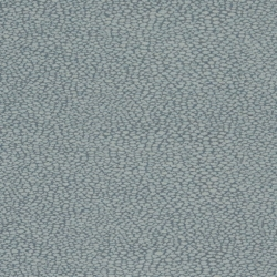 D899 Pebble/Sapphire