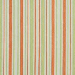 D989 Catalina Stripe