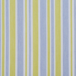 D999 Spring Wide Stripe