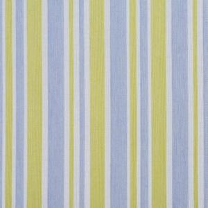 D999 Spring Wide Stripe