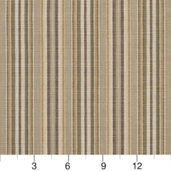R310 Coffee Stripe