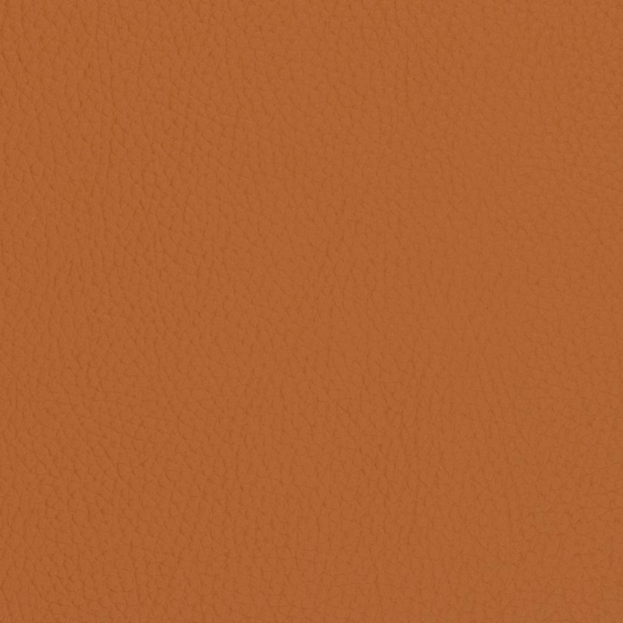 V427 Burnt Sienna