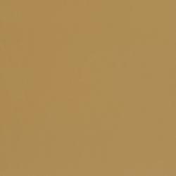 V436 Sand Dune