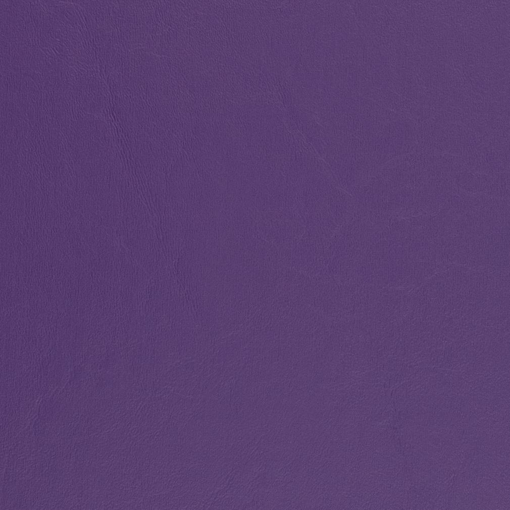 V459 Purple