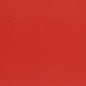 V463 Red