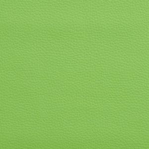 V490 Lime