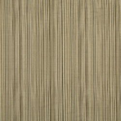 Y275 Latte Stripe