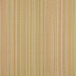 Y278 Coral Peach Stripe
