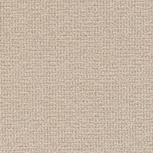 D1446 Sandstone Texture