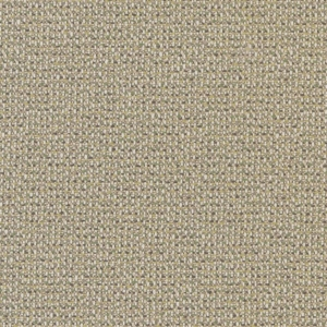 D1449 Lime Texture