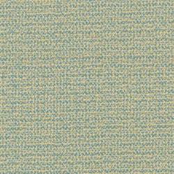 D1452 Caribe Texture