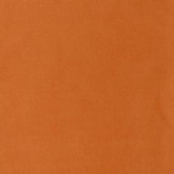 D1482 Apricot