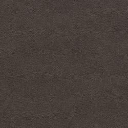 V501 Charcoal