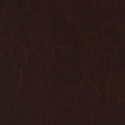 V523 Sable