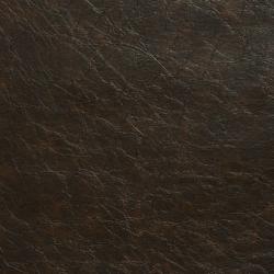 V527 Bark