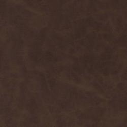 V536 Chocolate