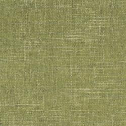 D1739 Grass
