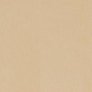 D1785 Parchment