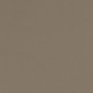 V583 Dove