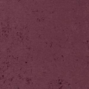 D1914 Violet