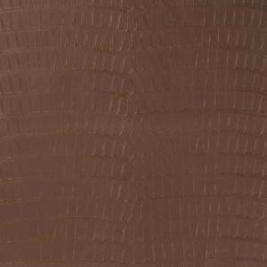 V591 Chocolate